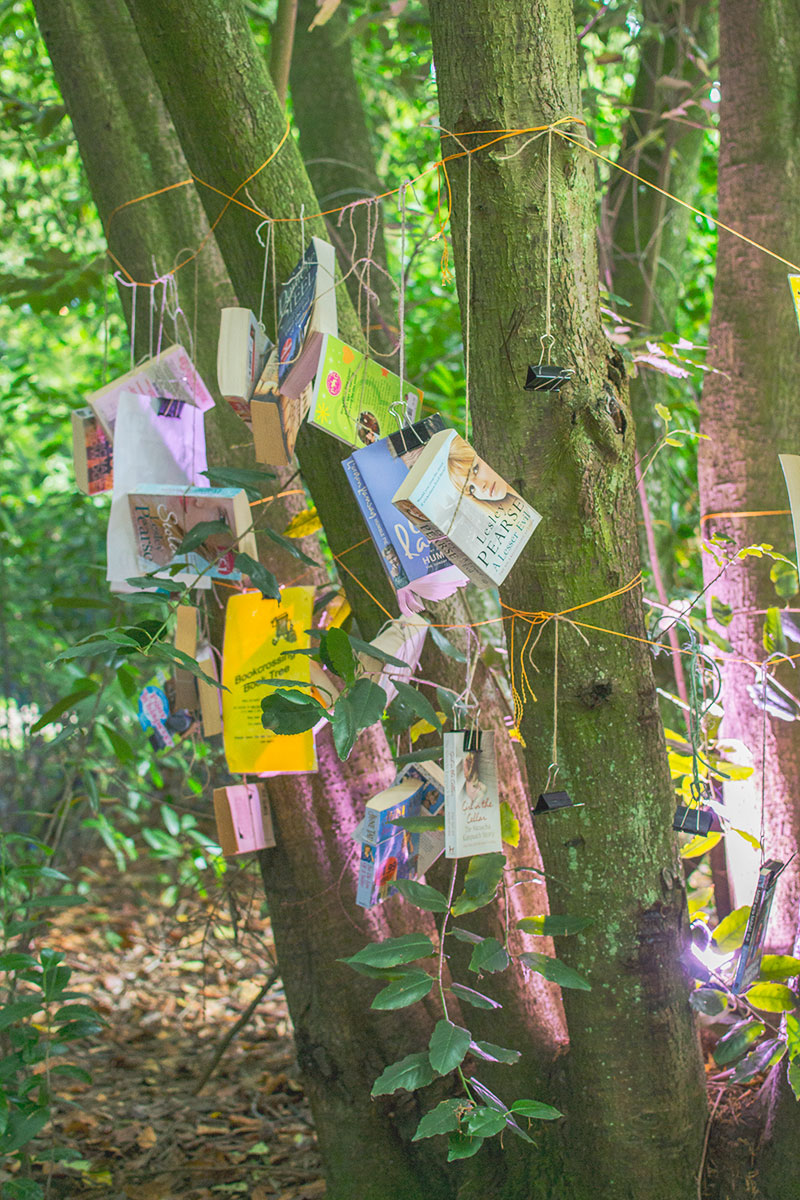 book-tree-at-larmer-tree