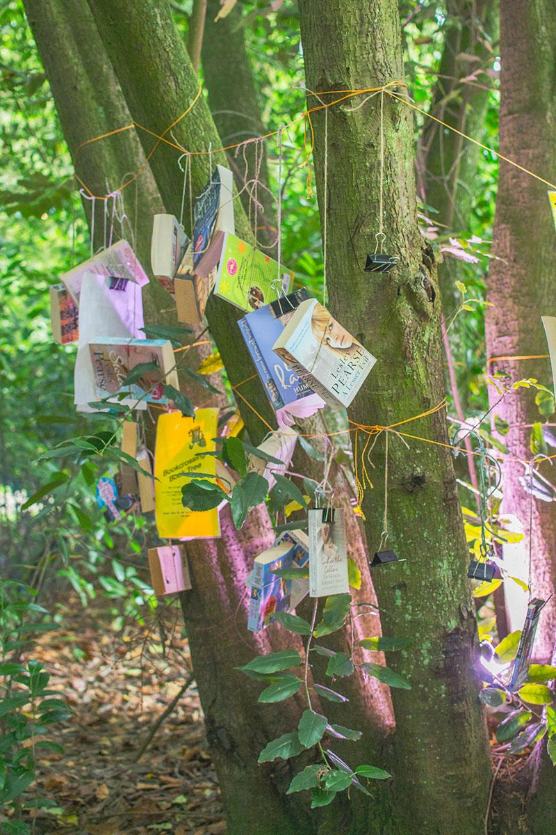book-tree-at-larmer-tree